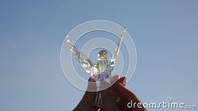 Vogel van glas in de handen van een meisje stock footage