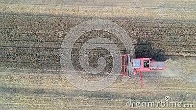 Vogelperspektive auf Arbeitserntemaschine auf Weizenfeld, Ausschnitt und der Bedeckung mit Laub stock video