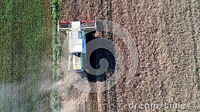 Vogelperspektive auf Arbeitserntemaschine auf Weizenfeld, Ausschnitt und der Bedeckung mit Laub stock footage