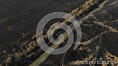 Vogelperspektive des gebrannten Feldes, fliegen vorwärts Unfall- und Notereignisse, Luftverschmutzung stock video