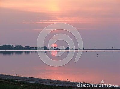Voici venir le Sun