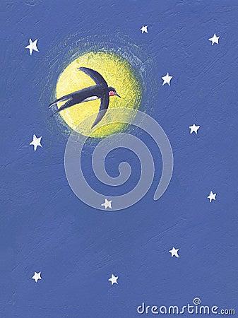 bois vol la nuit - photo #23