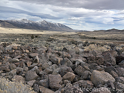 Volcanic rock field in the Northern Nevada Desert