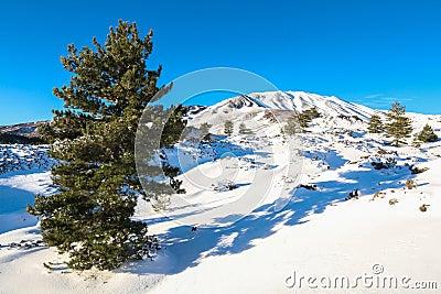 Volcano Etna in Snow, Catania