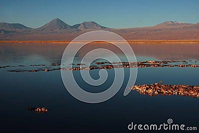 Volcano licancabur in a chilean lagoon