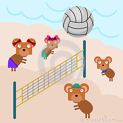 Volleyball bears