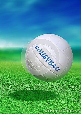 Volleyball on green ground