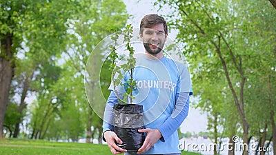 Volontario sorridente di sesso maschile che tiene piantine di alberi verdi in piedi nella foresta, evento ecologico stock footage