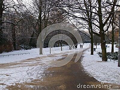 Vondel Park in Winter