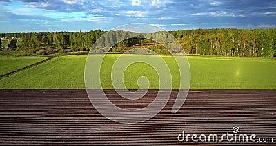 Voo acima das fileiras harrowed do campo e terra verde à floresta filme