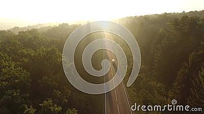 Voo sobre a estrada no nascer do sol vídeos de arquivo