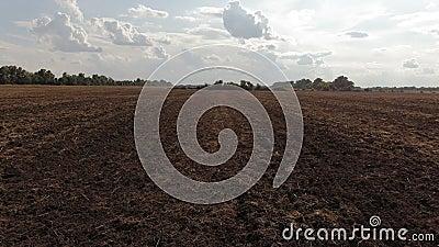 Voo sobre o campo arado agronomy Silhueta do homem de neg?cio Cowering video estoque