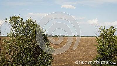 Voo sobre o campo arado agronomy Silhueta do homem de neg?cio Cowering vídeos de arquivo