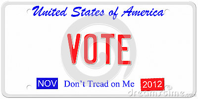 Voting in the U.S.A.