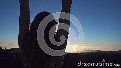 Vrouw die Haar Wapens in de Lucht golven stock footage