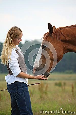 Vrouw die paard een traktatie geeft