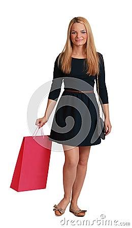 Vrouw met het Winkelen Zak