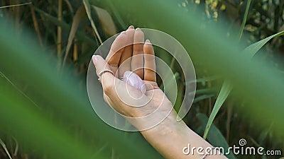 Vrouwelijke hand met franse manicure met roze kwarts roze yoni ei voor damp, imbuilding of meditatie Kristal-gem stock videobeelden