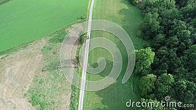 Vue aérienne d'un cheval amish et d'un buggy descendant la route de terre banque de vidéos