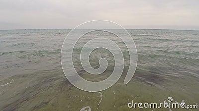 Vue aérienne de bourdon au-dessus de bord de la mer polluée avec l'algue, l'eau sale, écologie banque de vidéos