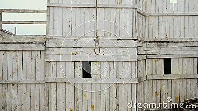 Vue d'ensemble Hirondelle avec boucle de corde durable en bois de suicide arrière-plan 4K clips vidéos
