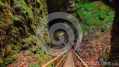 Vue de inclinaison hiérarchisée de la caverne de glace de Scarisoara en Roumanie banque de vidéos