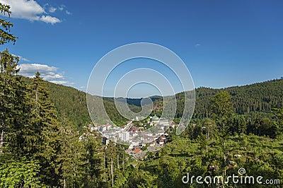 Vue de la ville du saint blaise photo stock image 64661554 - Piscine foret noire allemagne saint denis ...