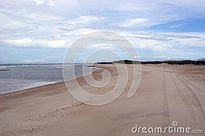 Vue de plage avec des pistes de pneu