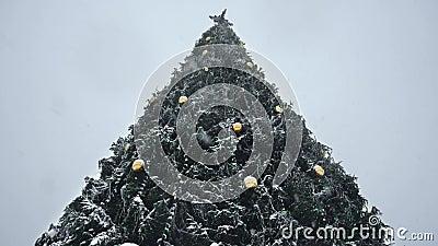 Vue du bas de l'arbre décoré de Noël en chute de neige Nouvel An Eve au blizzard dans la ville Hiver Concept de début de clips vidéos