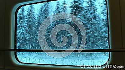 Vue par la fenêtre de train aux bois d'hiver Boucle sans couture banque de vidéos