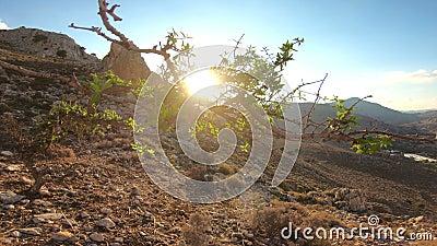 Vue pittoresque de la côte méditerranéenne de l'île de Rhodes avec des roches banque de vidéos