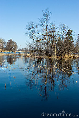 Free Vuoksi River Spring Landscape Stock Photos - 13119013