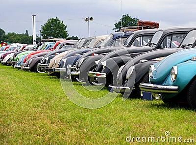 VW beetle meeting