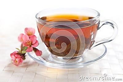 Växt- tea