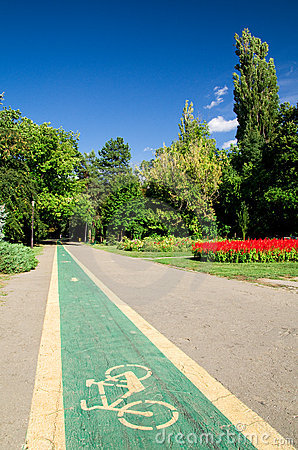 W parku rowerowy pas ruchu