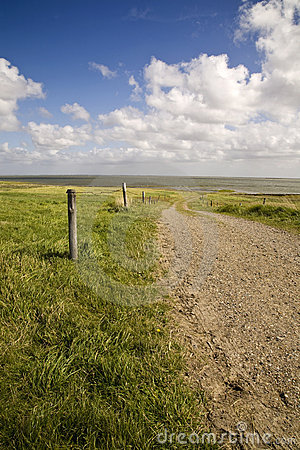 Free Wadden In Denmark Stock Photo - 7983360
