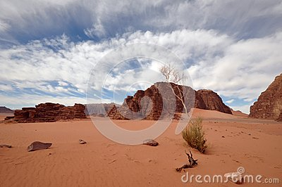Wadi Rum Landscape (wide angle)
