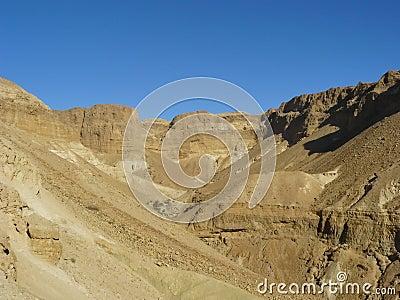 Wadi Zeelim. Judean Desert