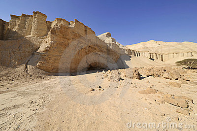 Wadi Zohar trek in Judea desert.