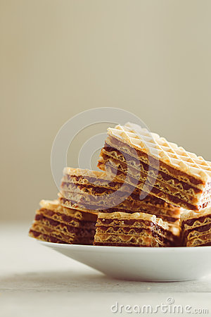 Free Wafer Royalty Free Stock Image - 47511936