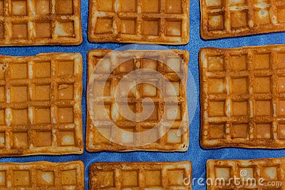 Wafers just baked