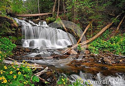 Wagner Falls, Munising Michigan, USA
