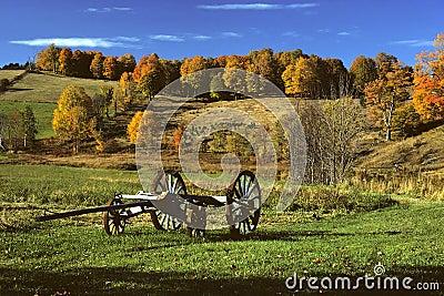 Wagon in Field