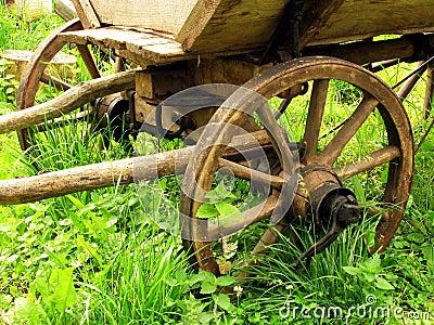 Wagon (Telega)