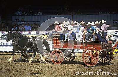 Wagon train, Fiesta Rodeo Editorial Stock Image