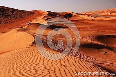 Wahiba Desert in Oman