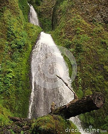 Free Wahkeena Falls Royalty Free Stock Photography - 3408167