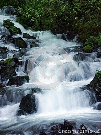 Free Wahkeena Falls I Royalty Free Stock Photos - 219788