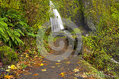 Wahkeena Falls Oregon and foot path