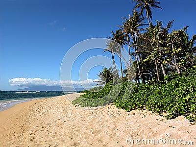 Waialua Beach Molokai Hawaii